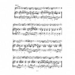 violon alto 1et4 sebim occasion