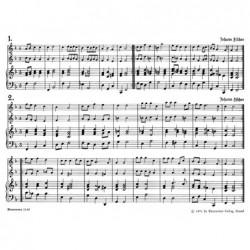 harpe celtique camac korrigan 34n