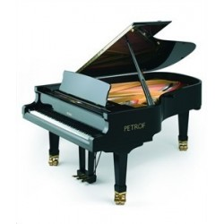 piano 1et2 queue petrof p 210 pasat
