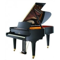 piano 1et4 queue seiler 186maestro n